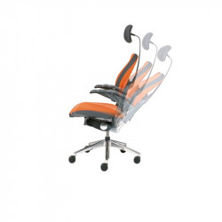 fauteuil ergonomique dos
