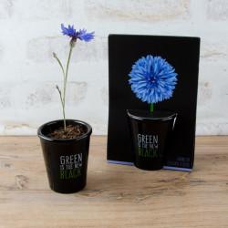 Fleur bureau pas cher