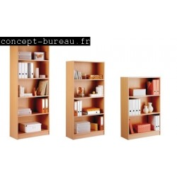 Bibliotheques Bookcase