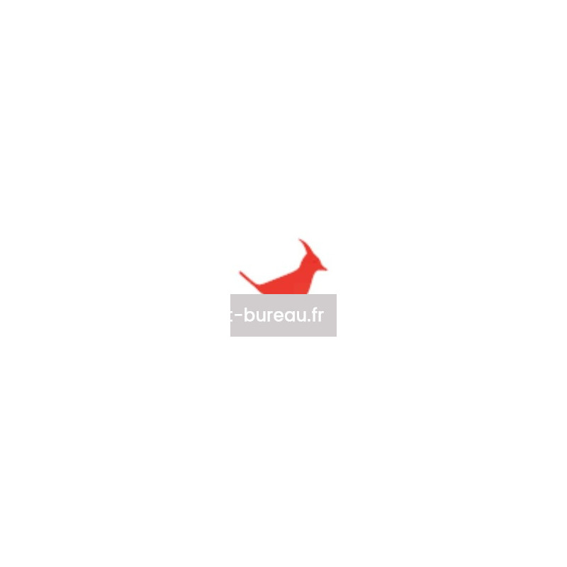 Accessoire Bird rouge