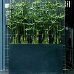 Plante artificielle d'intérieur