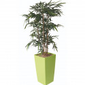 Plante artificielle pot carré - BAMBOU